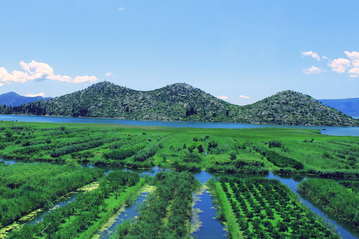Dalmatia nature