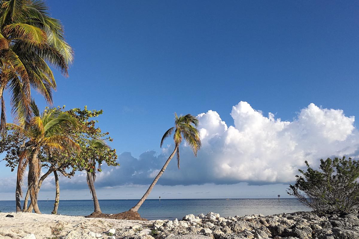 Key West landscape